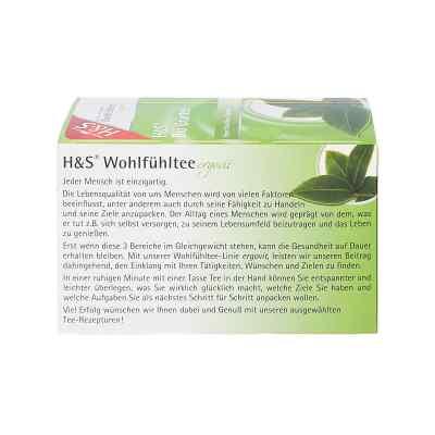 H&s Bio zielona herbata w torebkach