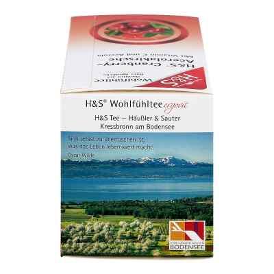 H&S herbata w saszetkach z żurawiną i acerolą  zamów na apo-discounter.pl