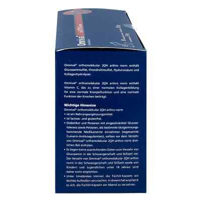 Omnival Orthomolekular 2OH arthro norm granulat+kapsułki
