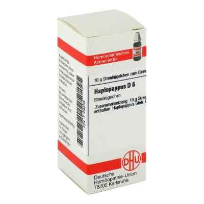 Haplopappus D 6 Globuli  zamów na apo-discounter.pl