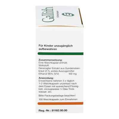 Gallith kapsułki  zamów na apo-discounter.pl