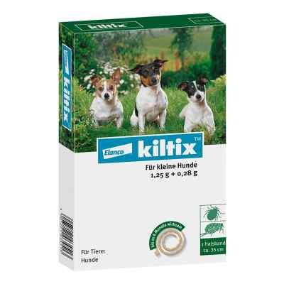 Kiltix f. kleine Hunde Halsband  zamów na apo-discounter.pl