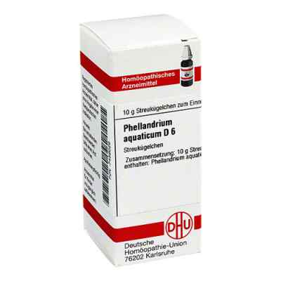 Phellandrium Aquaticum D 6 Globuli  zamów na apo-discounter.pl