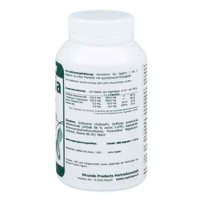 Griffonia 5 Htp 100 mg kapsułki wegetariańskie  zamów na apo-discounter.pl