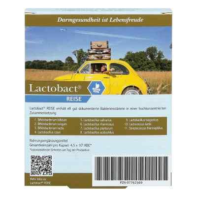 Lactobact Reise Kapseln magensaftr.  zamów na apo-discounter.pl