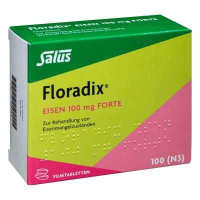 Floradix Eisen 100 mg forte Filmtabl.