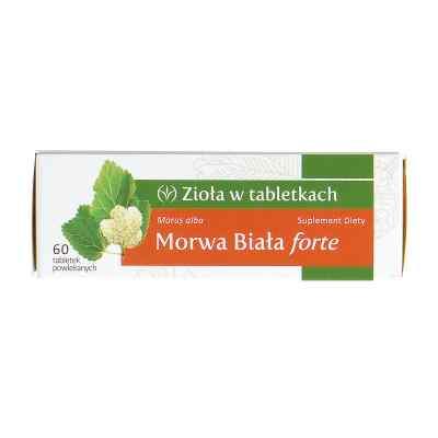 Morwa Biała forte  zamów na apo-discounter.pl