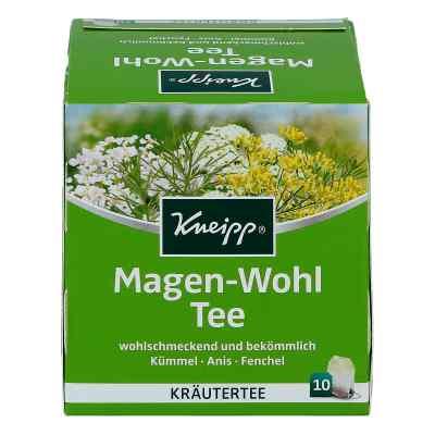 Kneipp Tee Magen Wohl saszetki  zamów na apo-discounter.pl