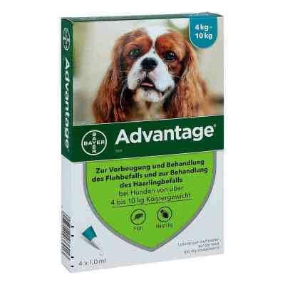 Advantage 100 f. Hunde Einzeldosispip.  zamów na apo-discounter.pl