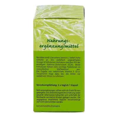 Nachtkerzenoel 500 mg Kapseln  zamów na apo-discounter.pl