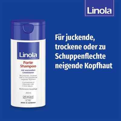 Linola Forte szampon  zamów na apo-discounter.pl