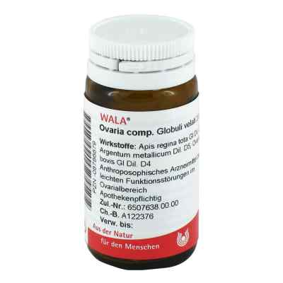 Wala Ovaria Comp. globulki