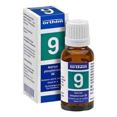 Biochemie Globuli 9 Natrium phosphoricum D 6  zamów na apo-discounter.pl