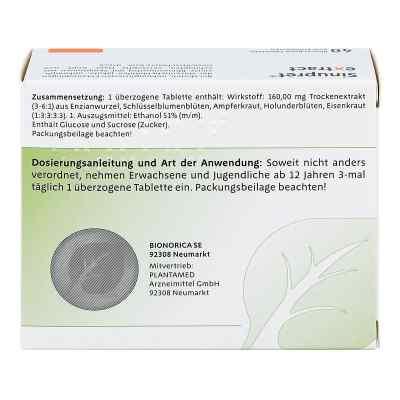 Sinupret Extract Tabletki powlekane   zamów na apo-discounter.pl