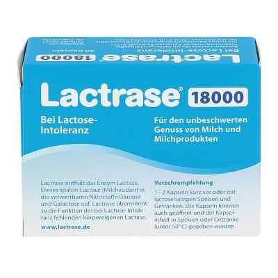 Lactrase 18.000 Fcc laktazy  kapsułki  zamów na apo-discounter.pl