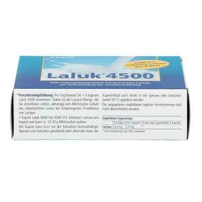 Laluk 4500 Kapseln  zamów na apo-discounter.pl