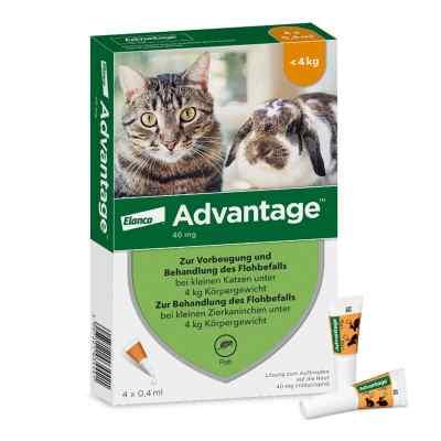 Advantage 40 mg für kl.Katzen und kl.Zierkaninchen  zamów na apo-discounter.pl