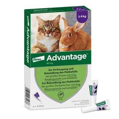 Advantage 80 mg für gr.Katzen und gr.Zierkaninchen  zamów na apo-discounter.pl