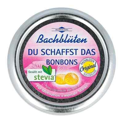 Bachblueten Murnauer pastylki na stres  zamów na apo-discounter.pl