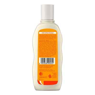 Weleda szampon odbudowujący z owsem
