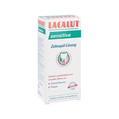 Lacalut sensitive płyn do płukania zębów  zamów na apo-discounter.pl