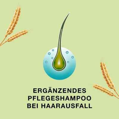 Priorin szampon do włosów cienkich i osłabionych  zamów na apo-discounter.pl