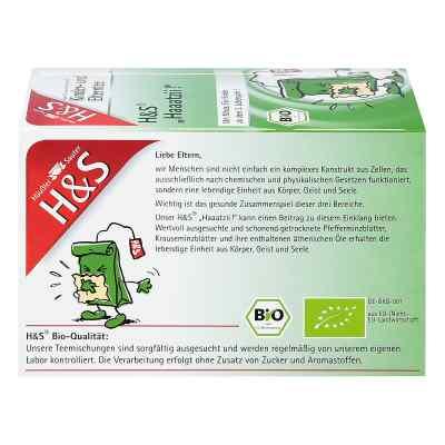 H&S Haaatzii Bio herbatka dla dzieci i dorosłych