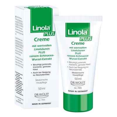 Linola Plus Krem z kwasem linolowym   zamów na apo-discounter.pl