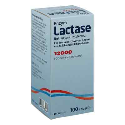 Lactase 12.000 Fcc Kapseln  zamów na apo-discounter.pl