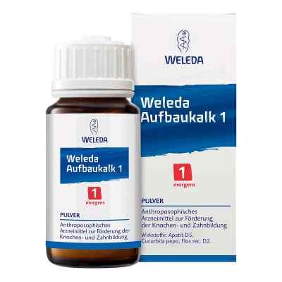 Weleda Aufbaukalk Fosforan fluorku wapnia 1 Proszek  zamów na apo-discounter.pl
