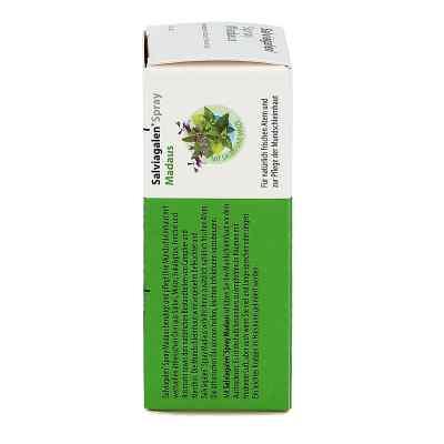 Salviagalen Spray Madaus  zamów na apo-discounter.pl