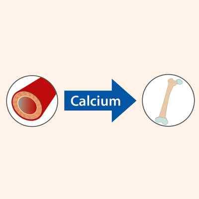 Vitamin K2 öl Doktor jacob's w kroplach  zamów na apo-discounter.pl