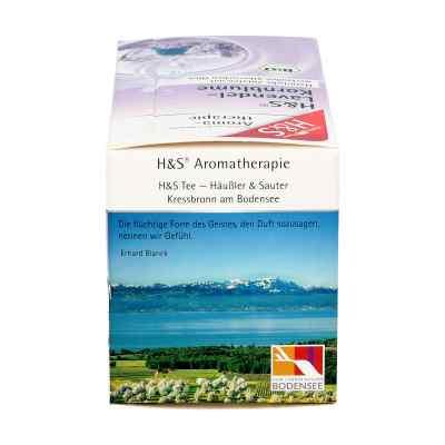 H&s Bio Lavendel-kornblume Aromatherap.filterbeut.  zamów na apo-discounter.pl