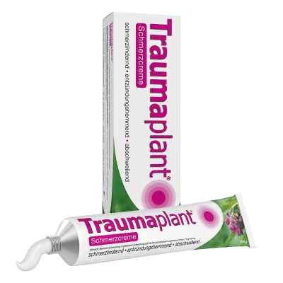 Traumaplant Schmerzcreme  zamów na apo-discounter.pl