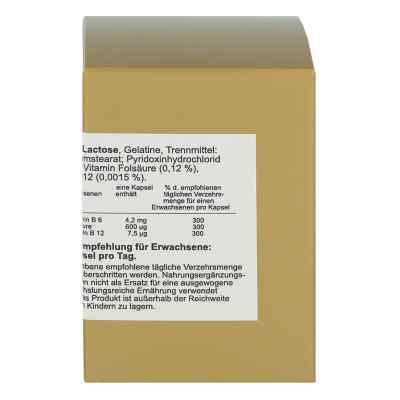 Folsäure+vitamin B6+b12 Komplex N Kapseln  zamów na apo-discounter.pl