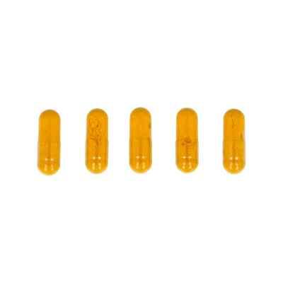 Kurkuma Kapseln  zamów na apo-discounter.pl